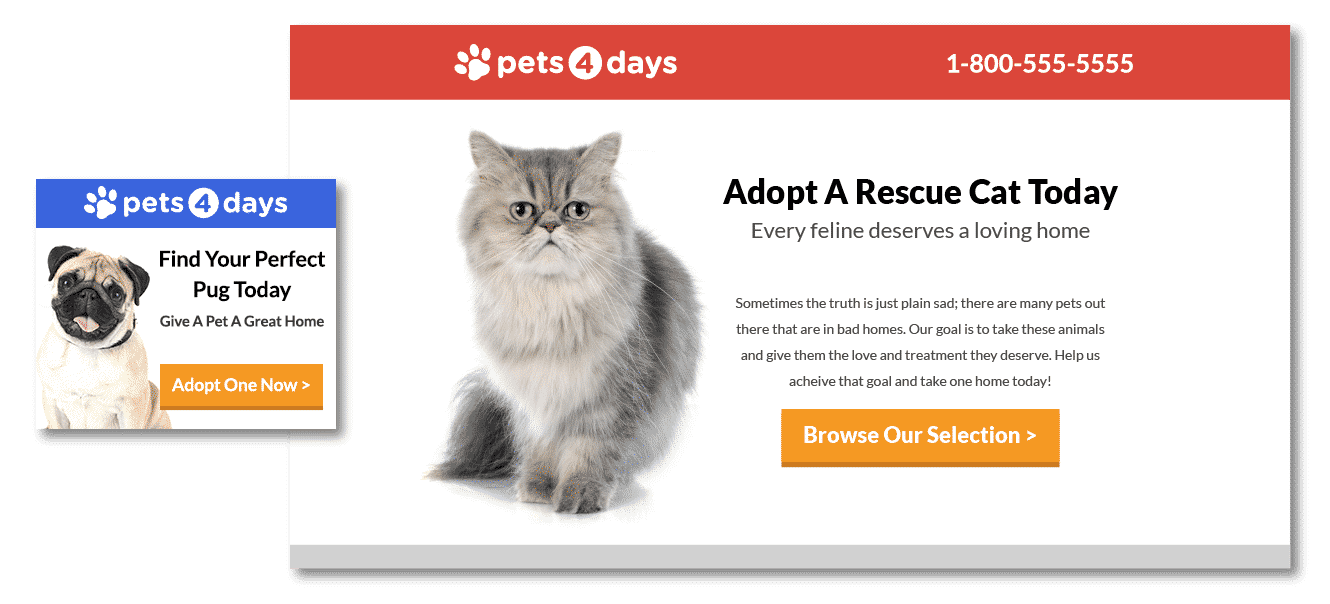 Pets 4 Days - Cat - Call to Action - Disruptive Advertising