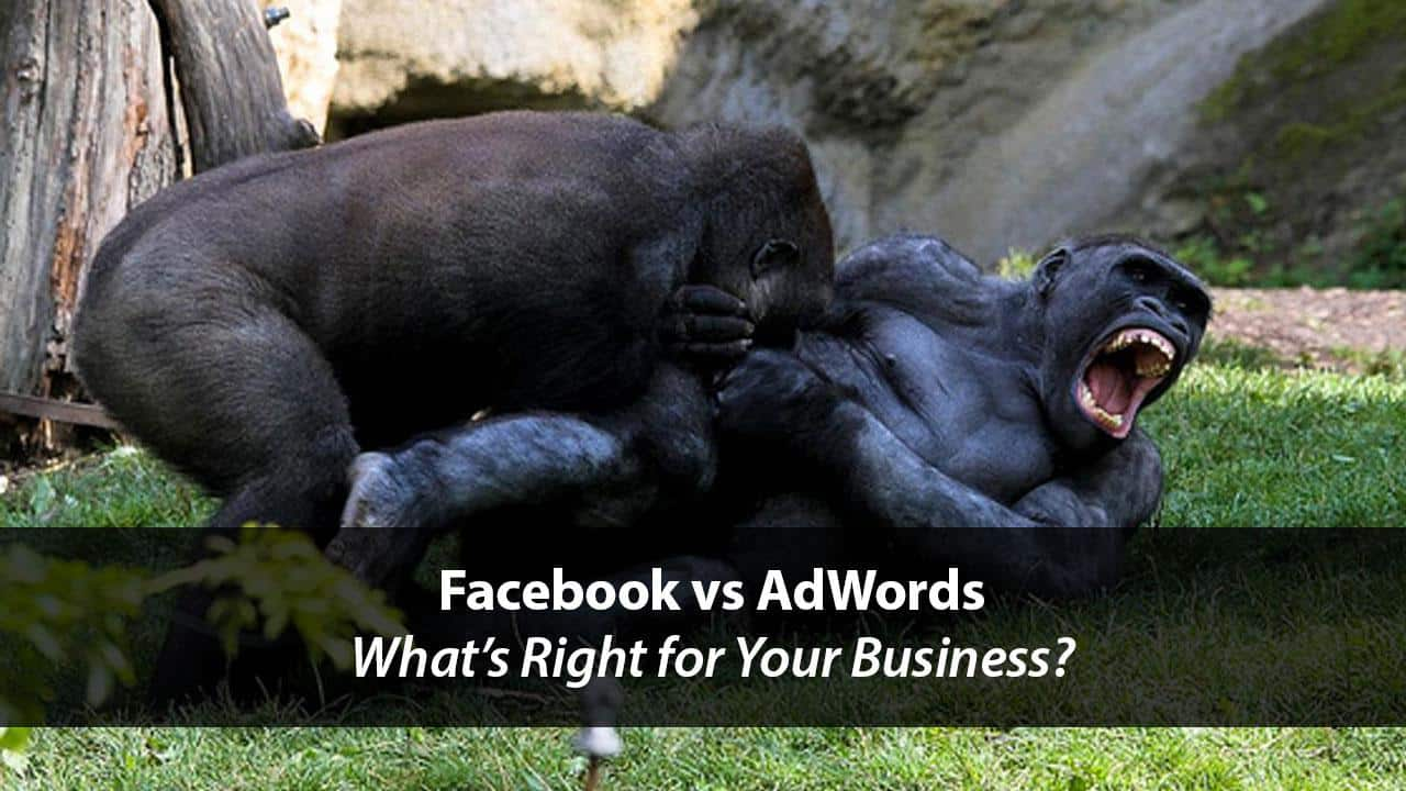 Facebook vs. AdWords: What's Right for Your Business? | Disruptive Advertising