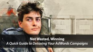 Not Wasted, Winning: A Quick Guide to Detoxing Your AdWords Campaigns | Disruptive Advertising