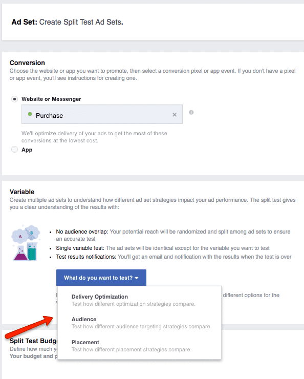 How to Split Test Facebook Ad Marketing Objectives | Disruptive Advertising