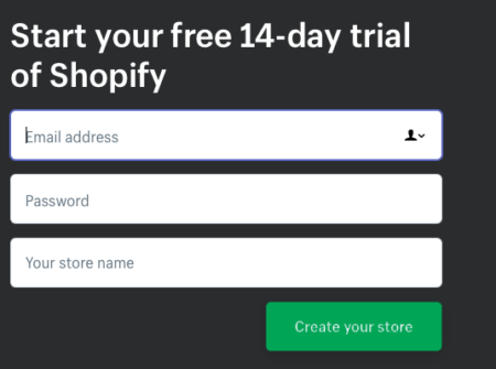 Shopify for Dummies: A Beginners Shopify Tutorial | Disruptive